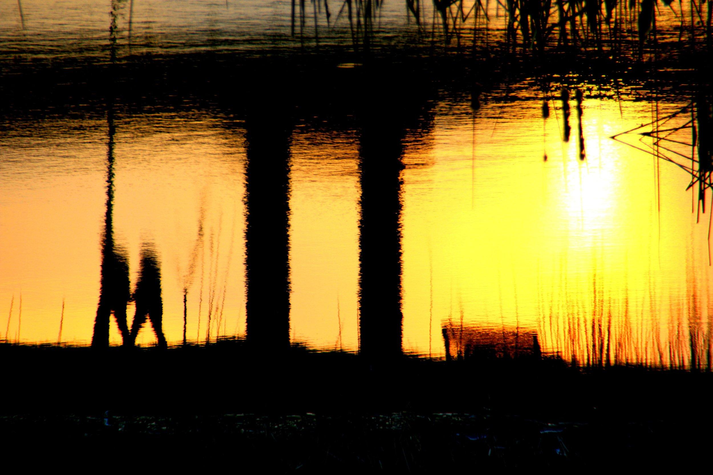 water-horizon-light-sun-sunrise-sunset-1081241-pxhere.com.jpg