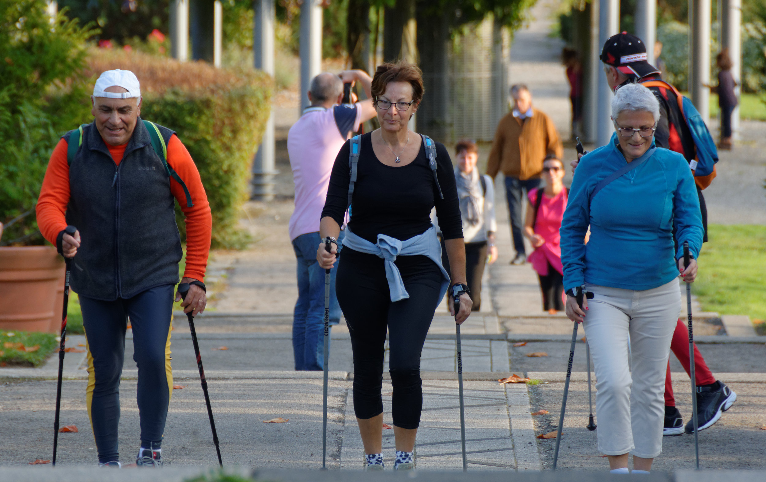Boomers walking.jpg