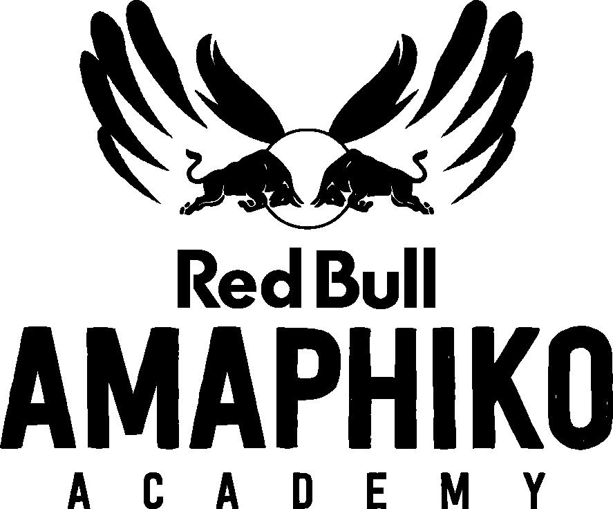 RB_Amaphiko_Logo_Black.png
