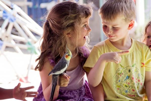 20140501_SSCP_Birdshow2014_Coop-4585-1024x683-599x400.jpg