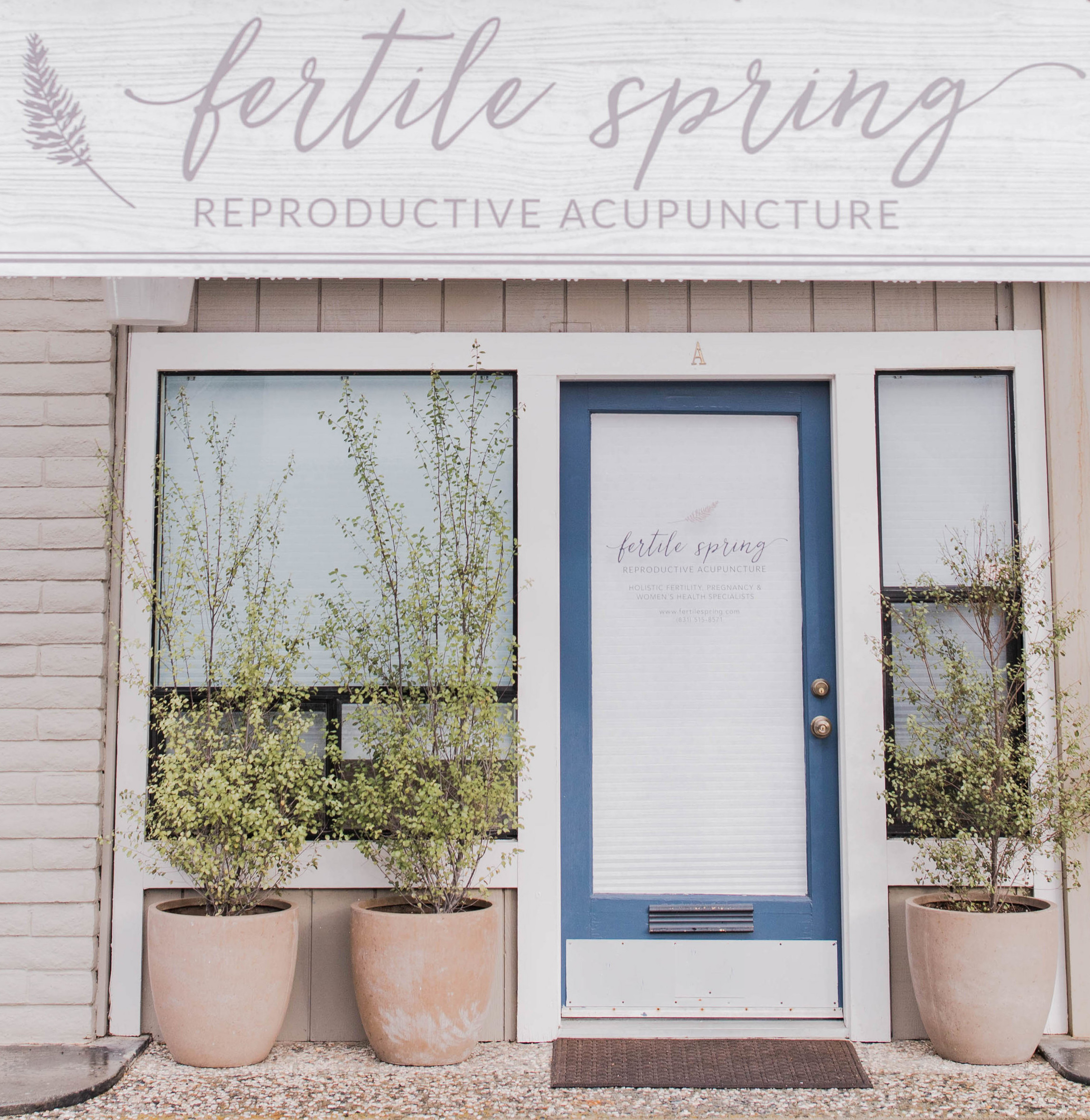 Fertile Spring Reproductive Acupuncture - Santa Cruz.jpeg