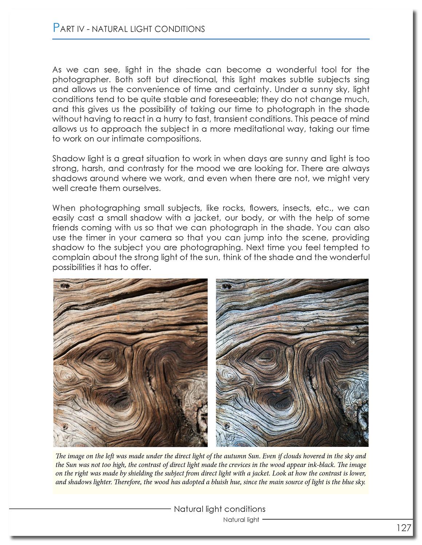 natural light_Page_127 copy.jpg