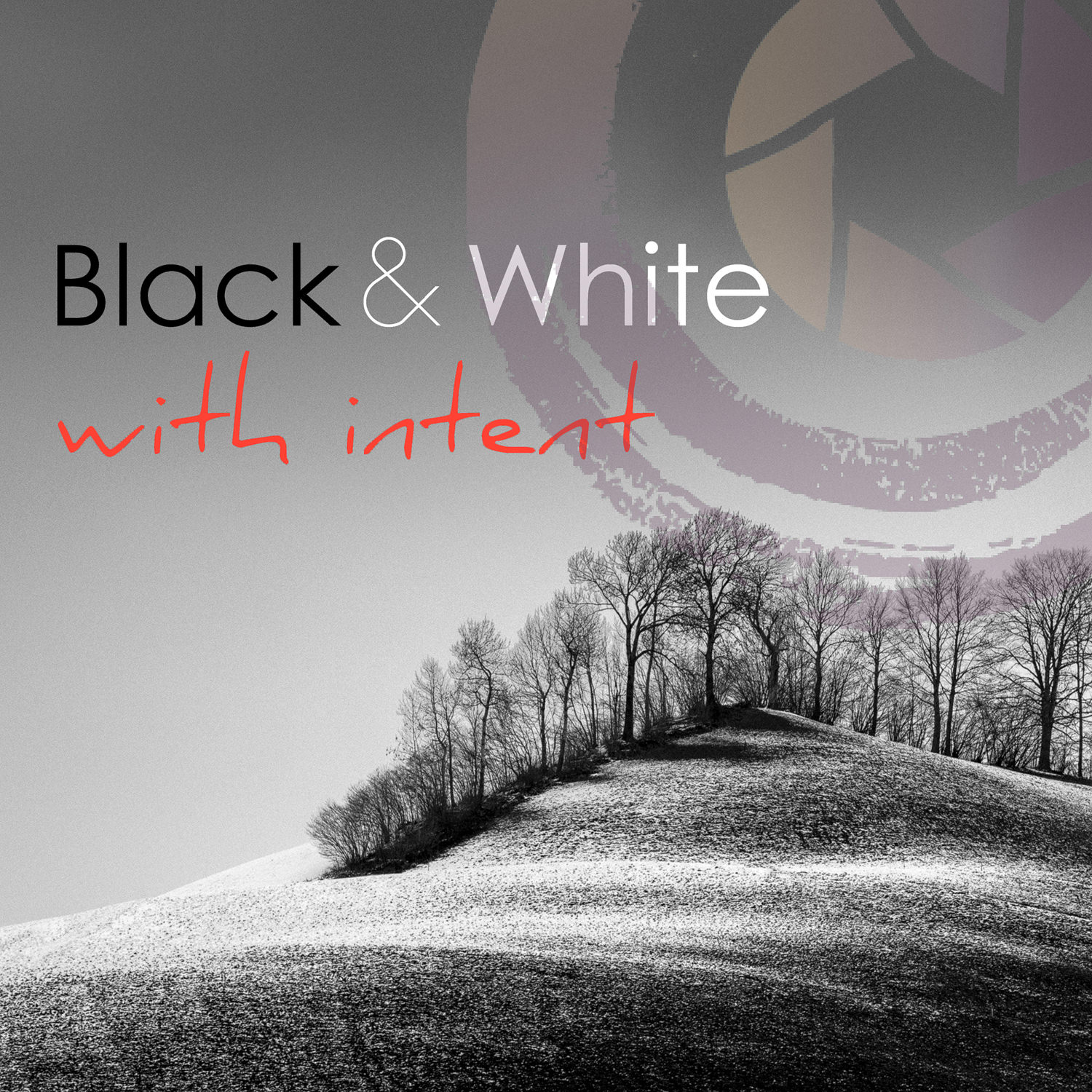12. BLACK & WHITE WITH INTENT - WRITTEN CONTENT