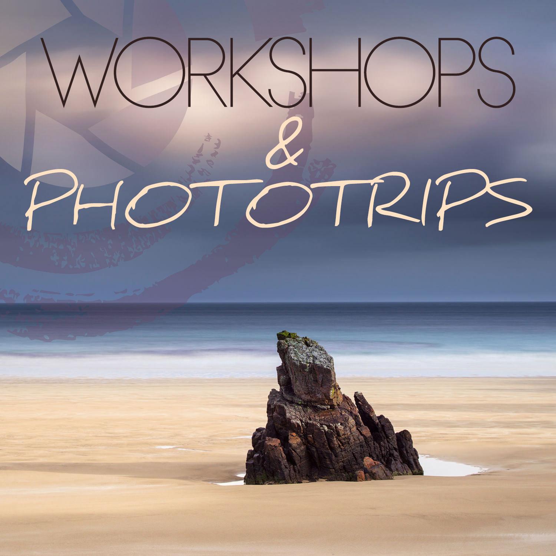 Workshops and Phototrips banner.jpg