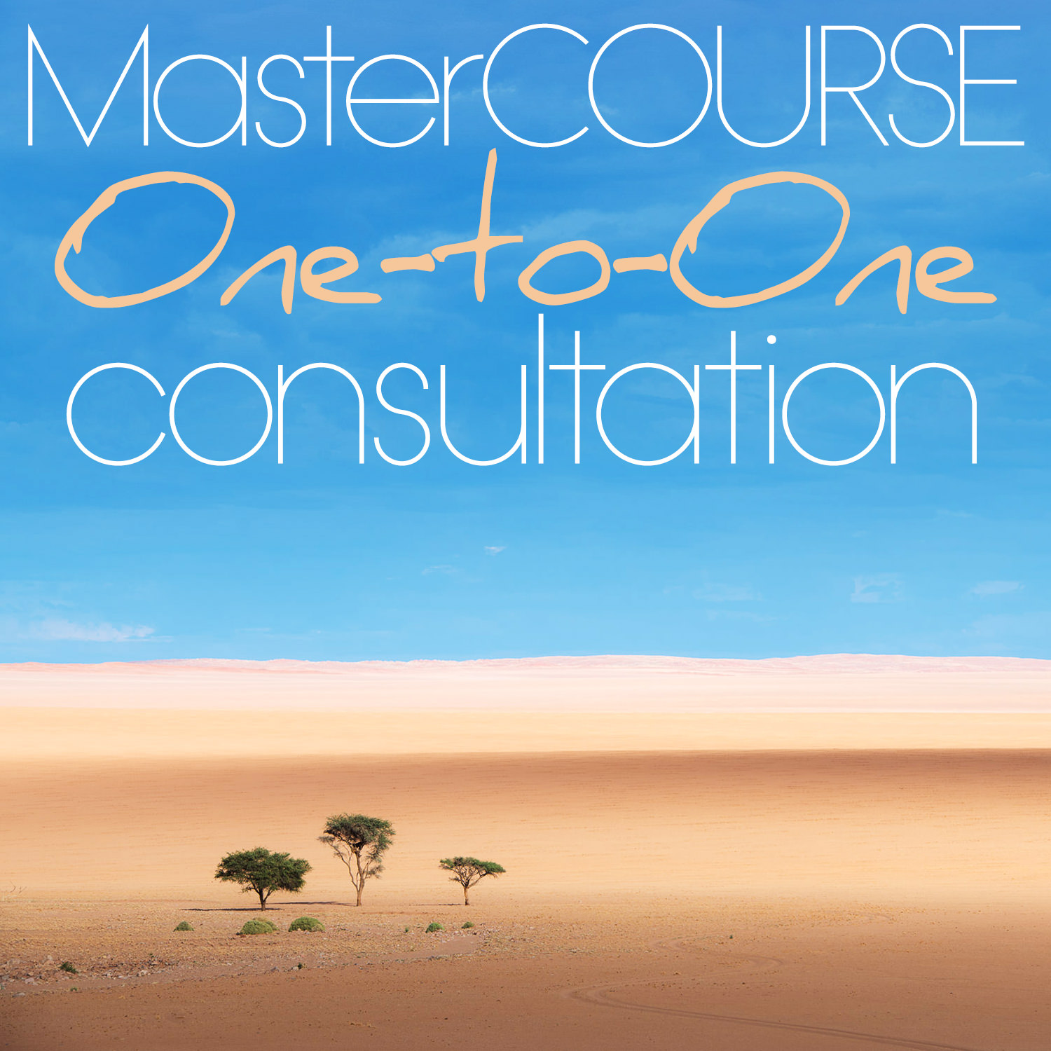 One to One consultation mastercourse.jpg
