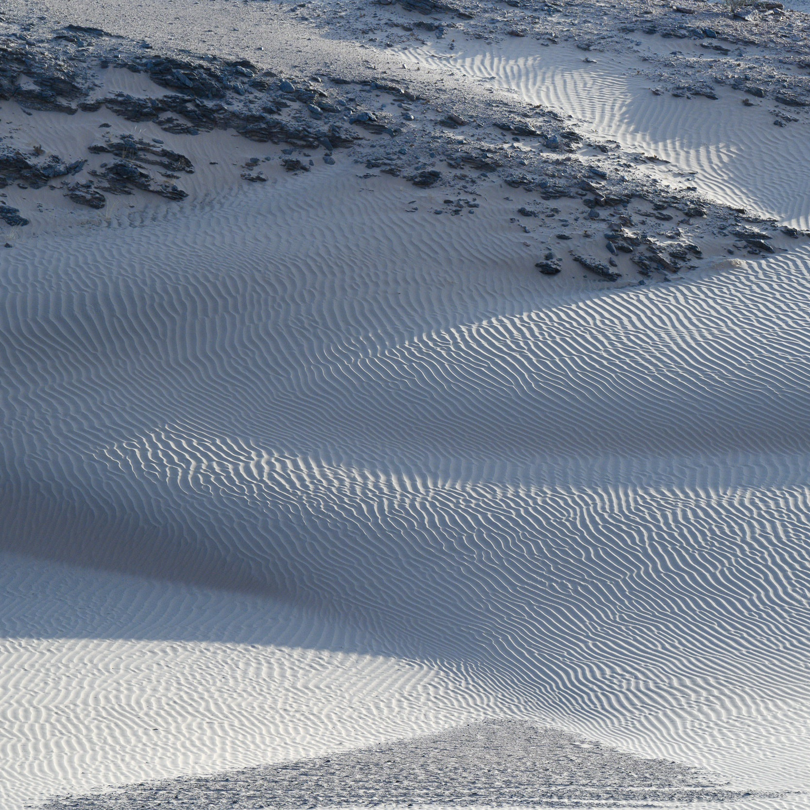 WILD & AWAY NAMIBIA - 14th - 22nd March 2020