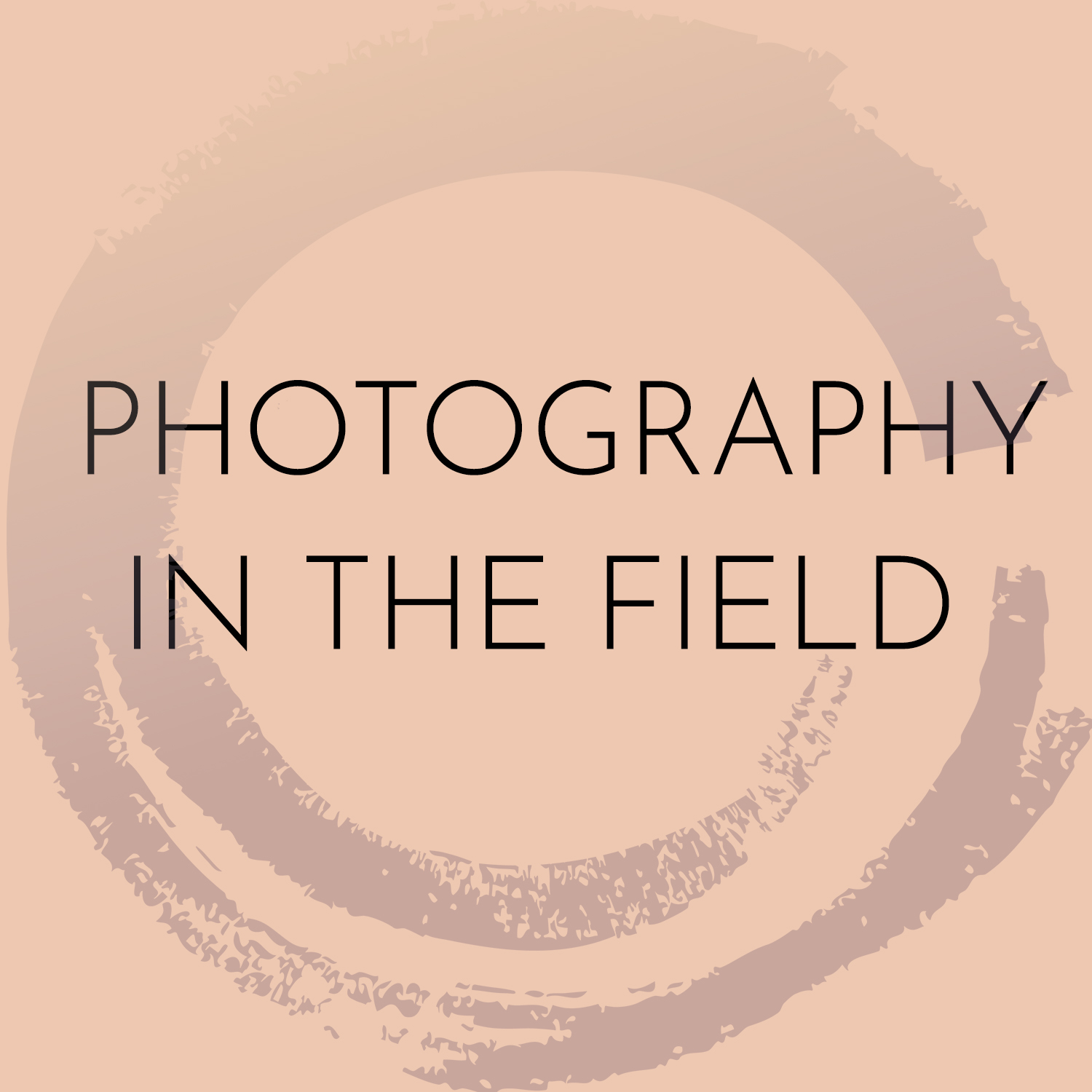 Photography in the field.jpg