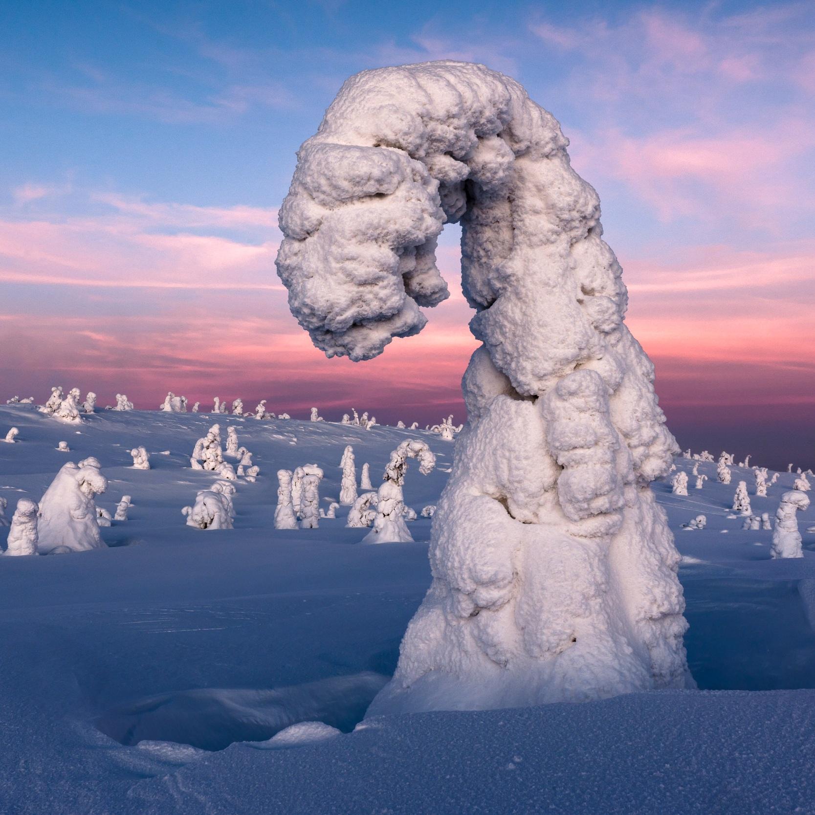 Frozen_dusk_RR_20120209_DSC5350.jpg