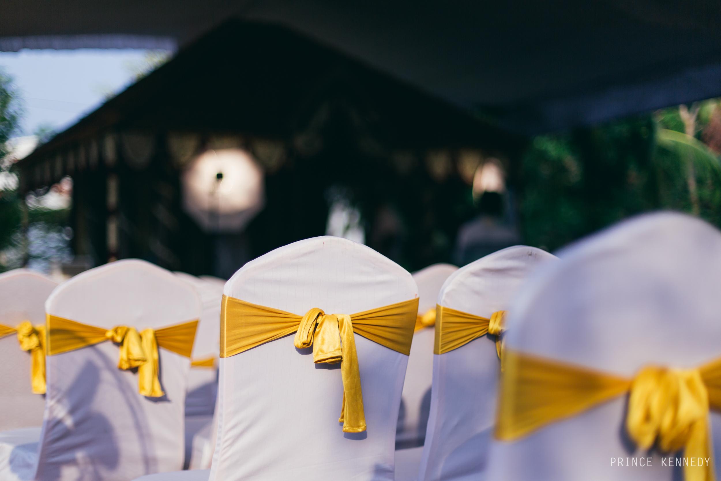 Athmajja-Nithesh-Engagement-Couple-Portrait-Portraiture-Wedding-Couple-Portrait-Chennai-Photographer-Candid-Photography-Destination-Best-Prince-Kennedy-Photography-10.jpg