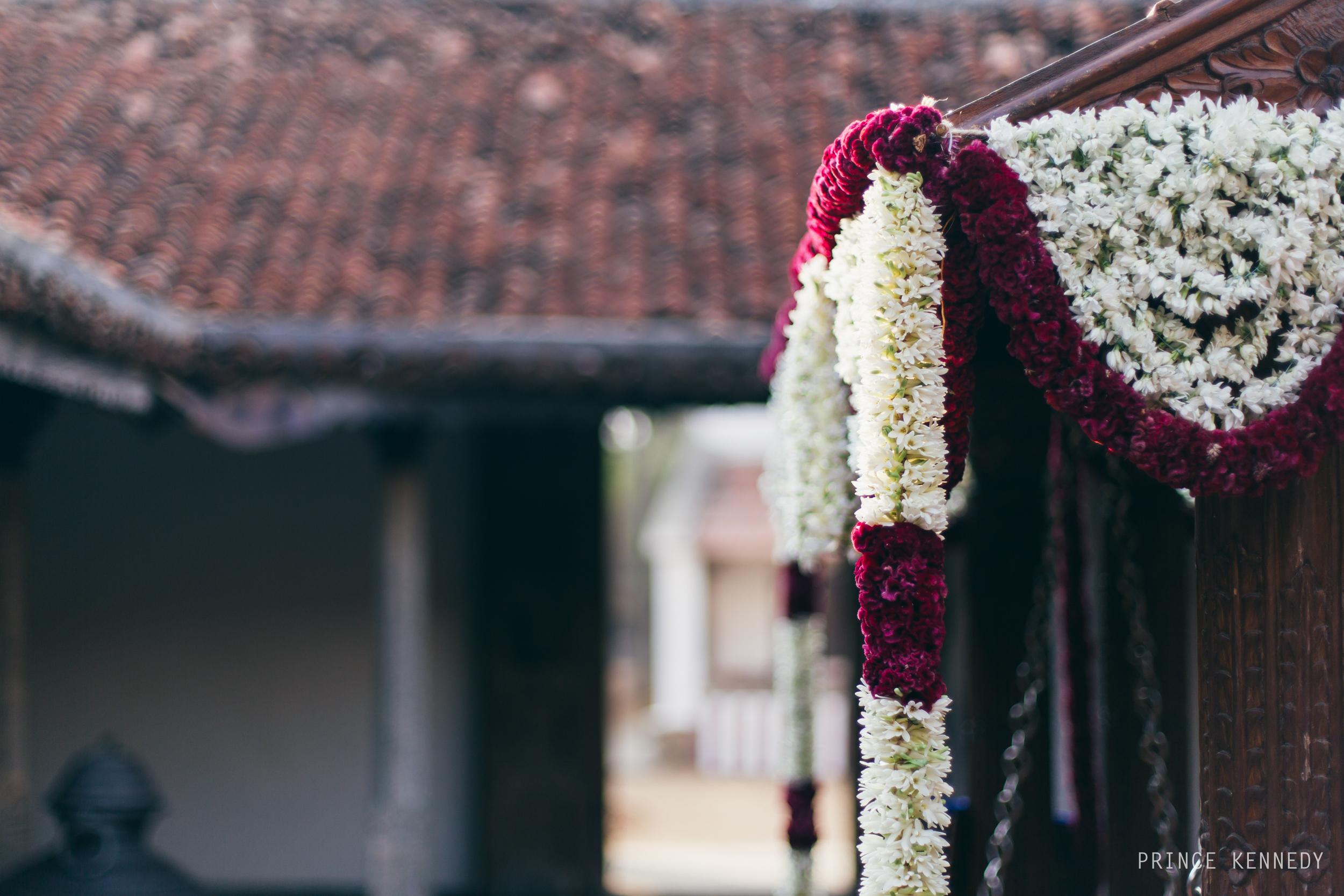 Athmajja-Nithesh-Engagement-Couple-Portrait-Portraiture-Wedding-Couple-Portrait-Chennai-Photographer-Candid-Photography-Destination-Best-Prince-Kennedy-Photography-19.jpg