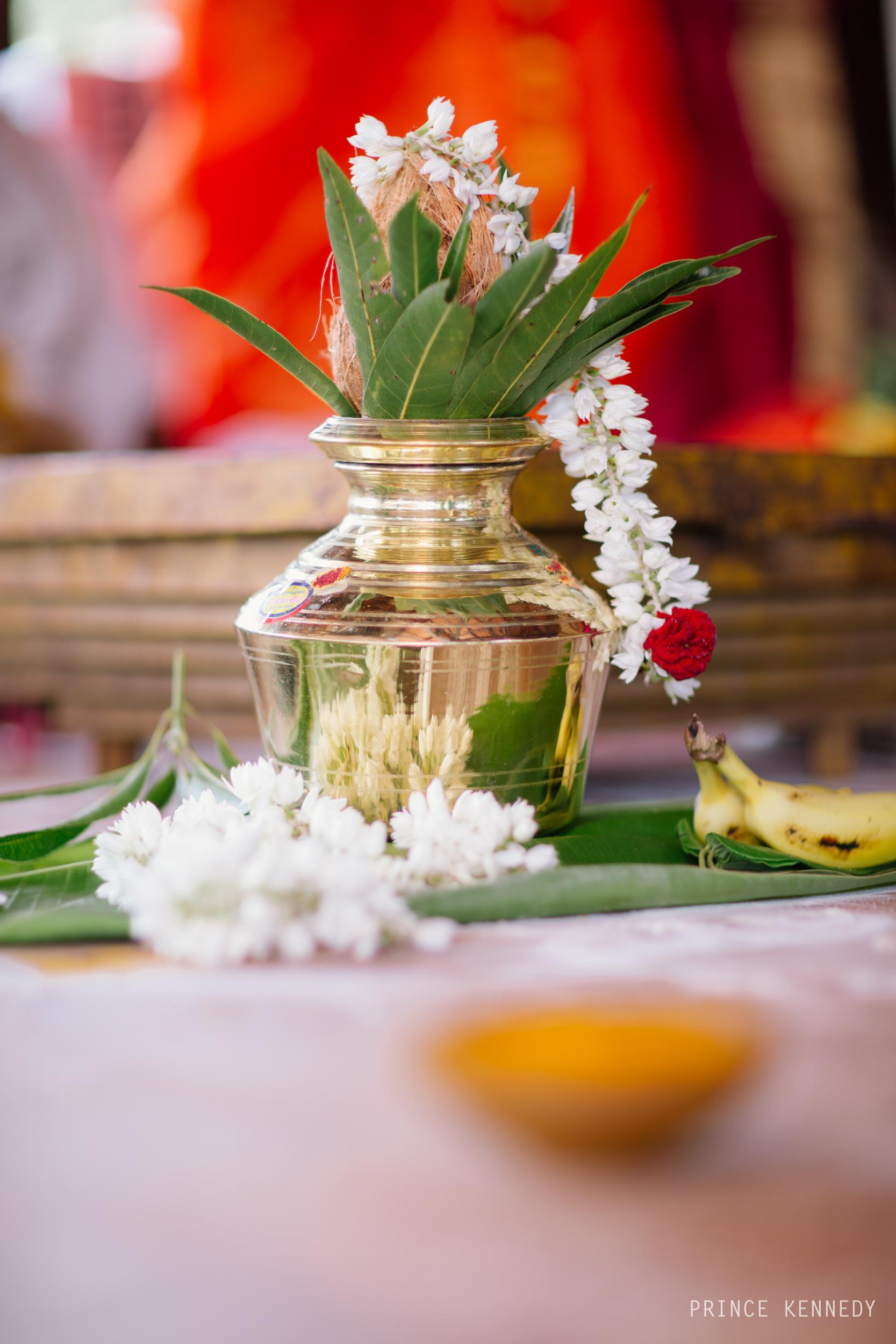 Athmajja-Nithesh-Engagement-Couple-Portrait-Portraiture-Wedding-Couple-Portrait-Chennai-Photographer-Candid-Photography-Destination-Best-Prince-Kennedy-Photography-205.jpg