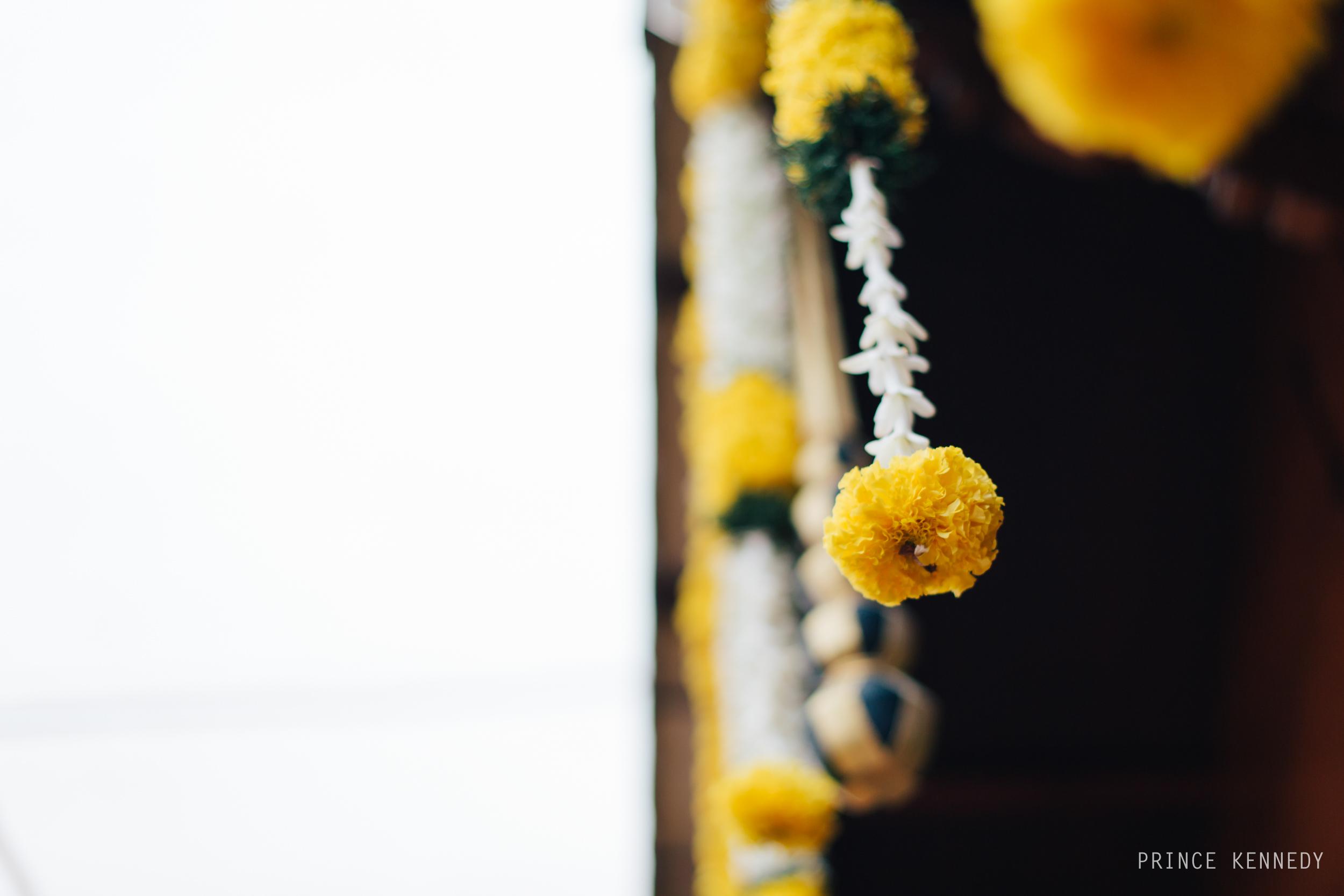 Engagement-Couple-Portrait-Portraiture-Wedding-Couple-Portrait-Chennai-Photographer-Candid-Photography-Destination-Best-Prince-Kennedy-Photography-61.jpg