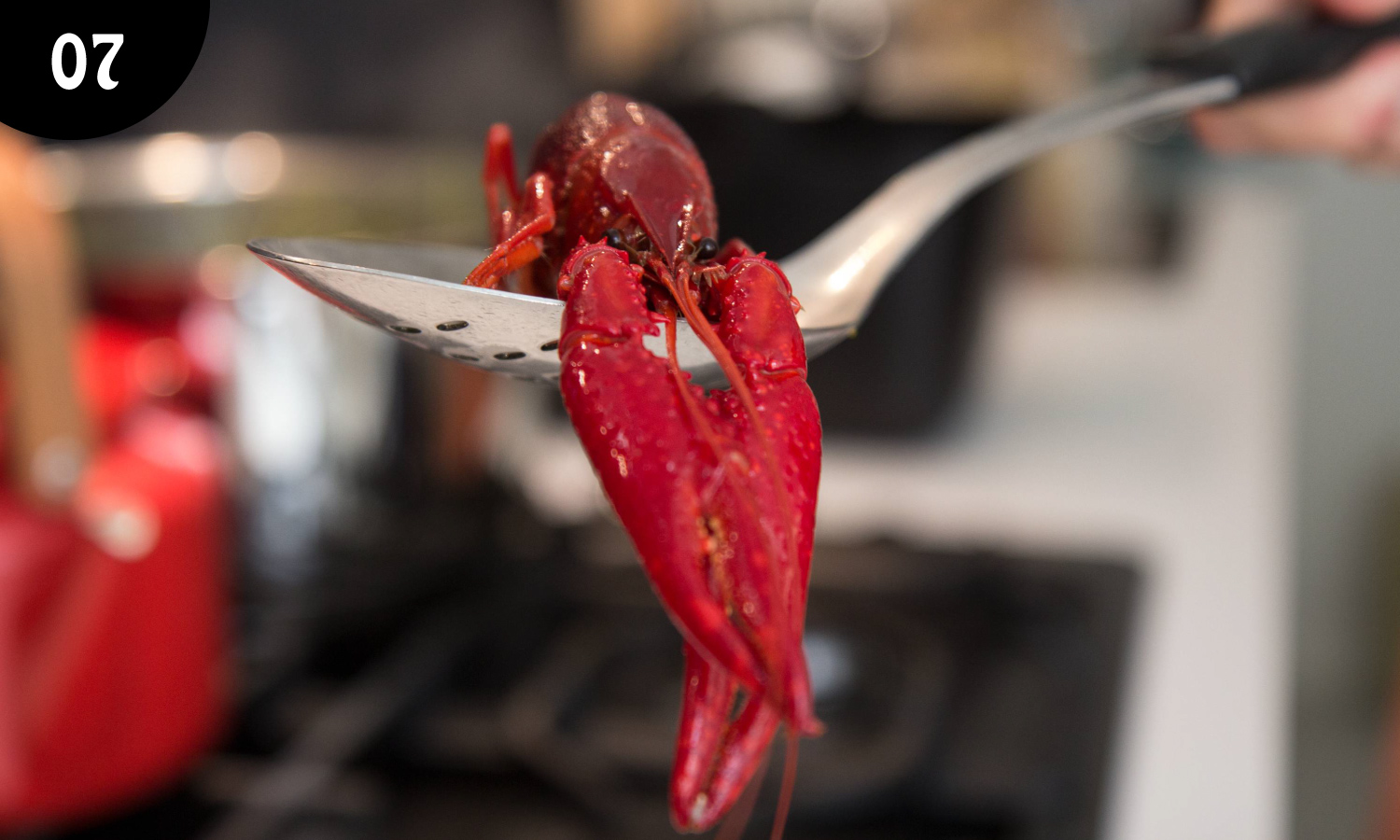 07 - Crayfish parties were originally a Swedish tradition that the Finns adopted and celebrate with finesse each summer. These small freshwater lobsters are considered a gourmet treat and they are not cheap. Which is why they are feted in style.  -