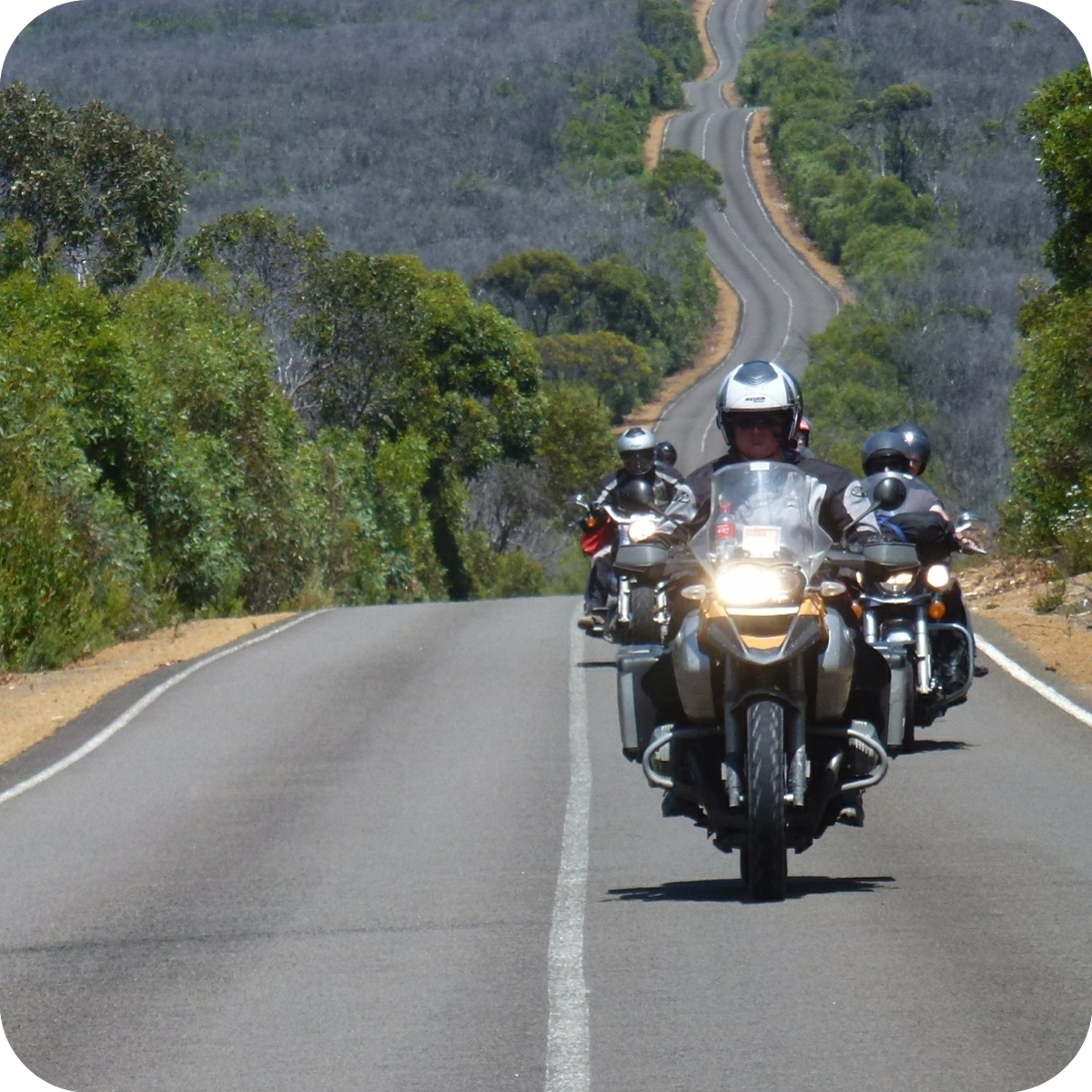 Motorcycle tours!