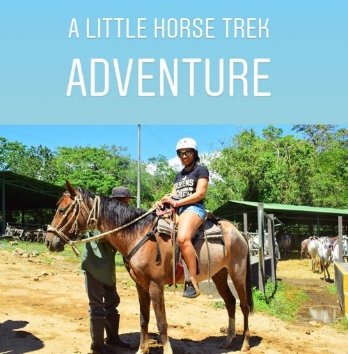 We rode horses through the jungle, up and down very steep and rocky hills and through rivers and streams.