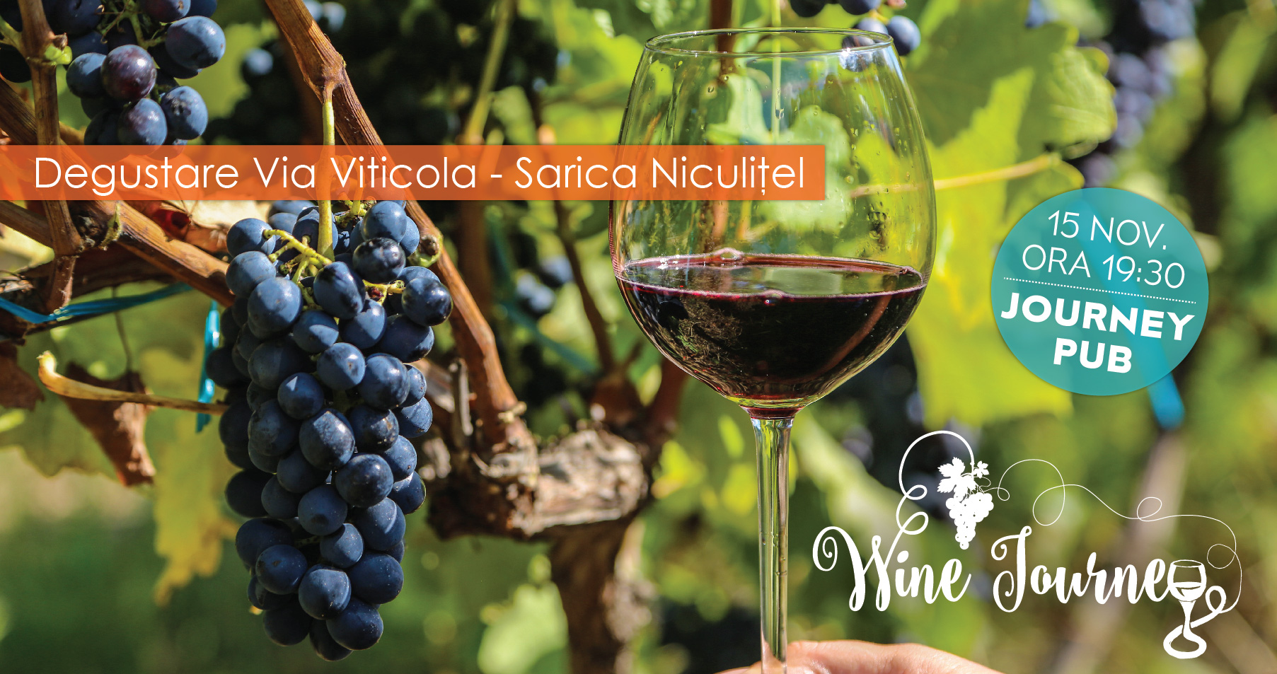 WineJourneySaricaNiculitel.jpg