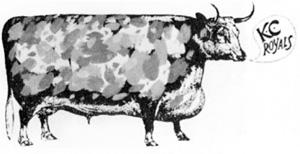 ROYALS COW