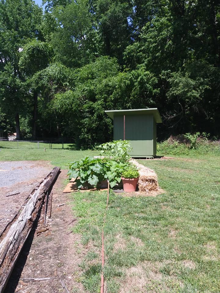 community garden 4.jpg