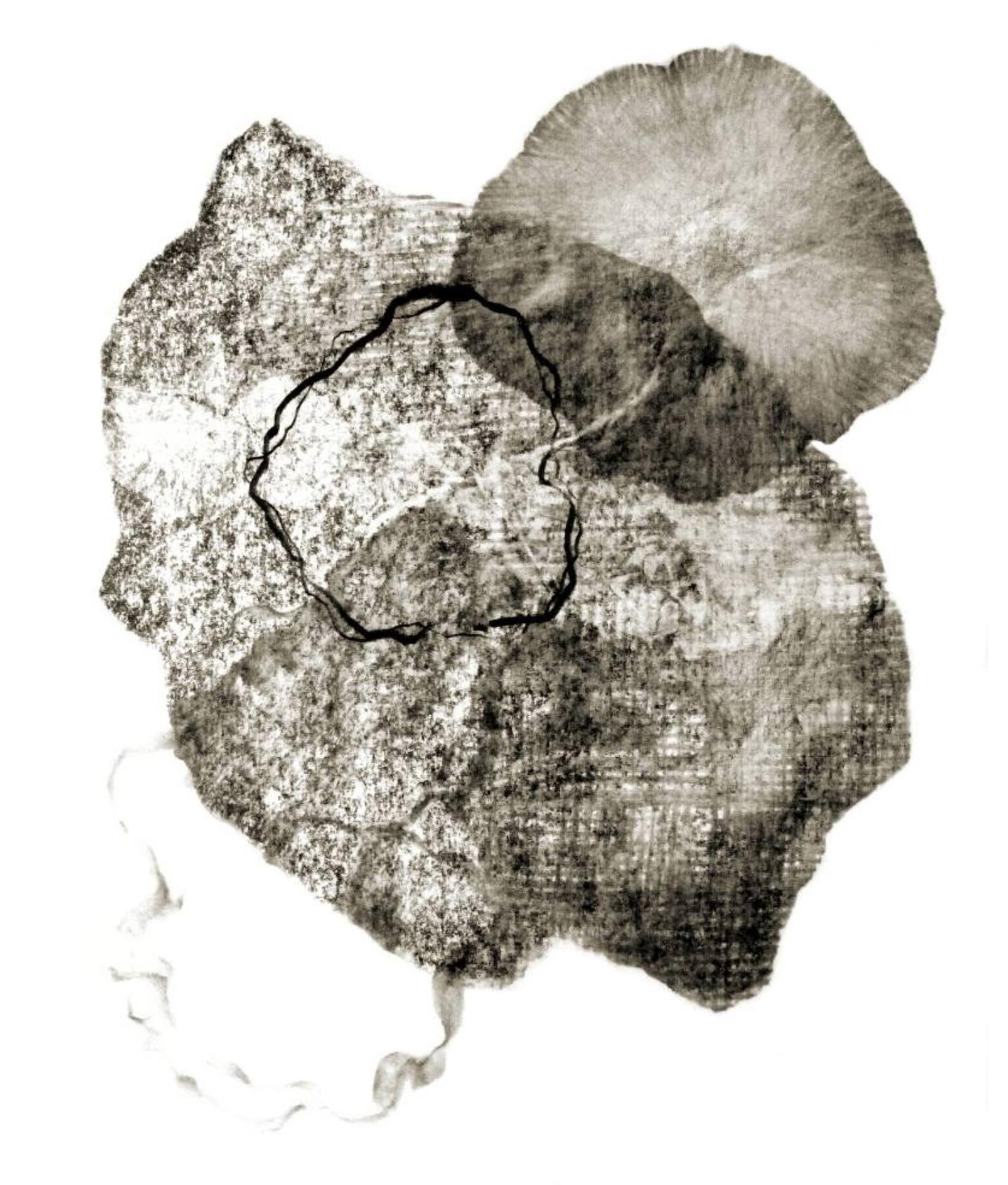 Metamorphosis VII by Genevieve Leavold