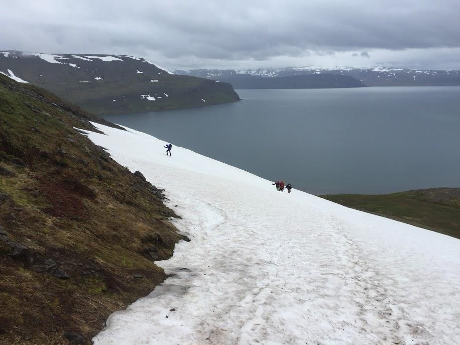 Westfjords Of Iceland - June 2018