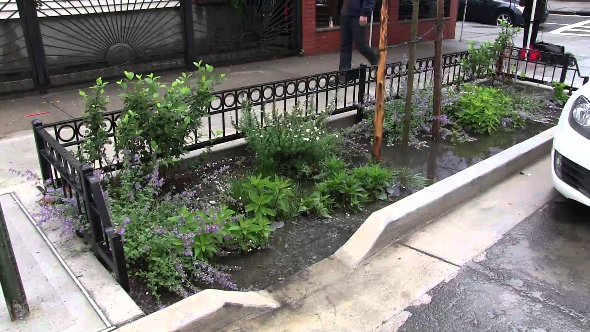 NYC Green Infrastructure