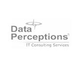 dataperceptions.jpg