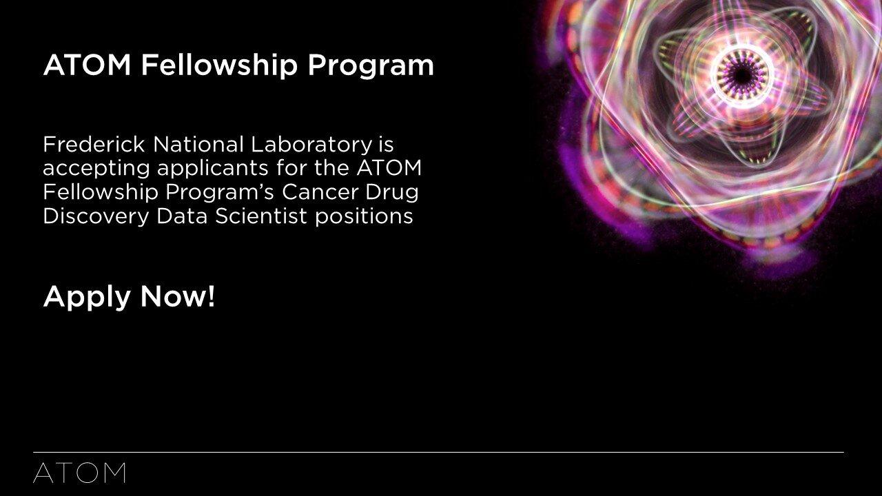 ATOM Fellowship Program 2019.jpg