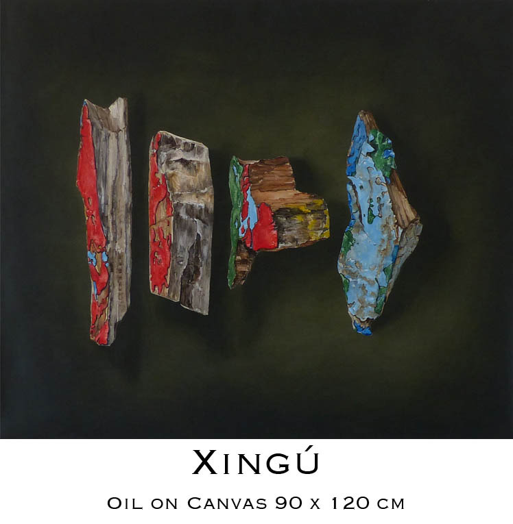 Xingú