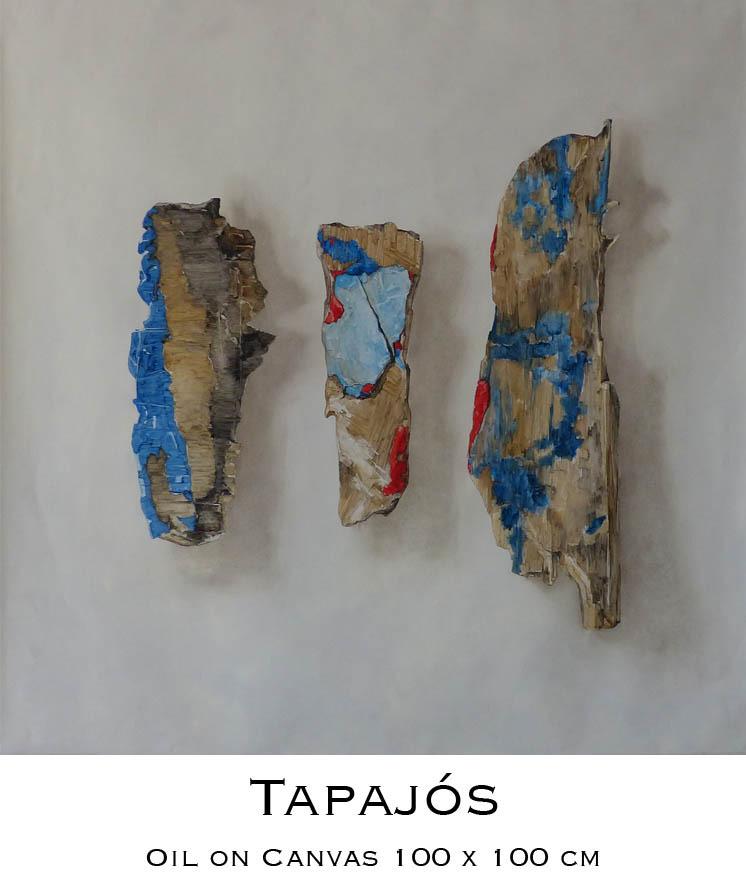 Tapajós