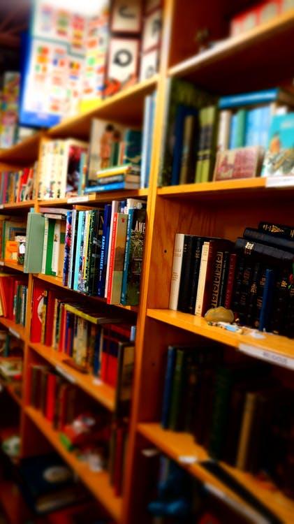 books-wooden-shelves-library-child-books-159702.jpeg