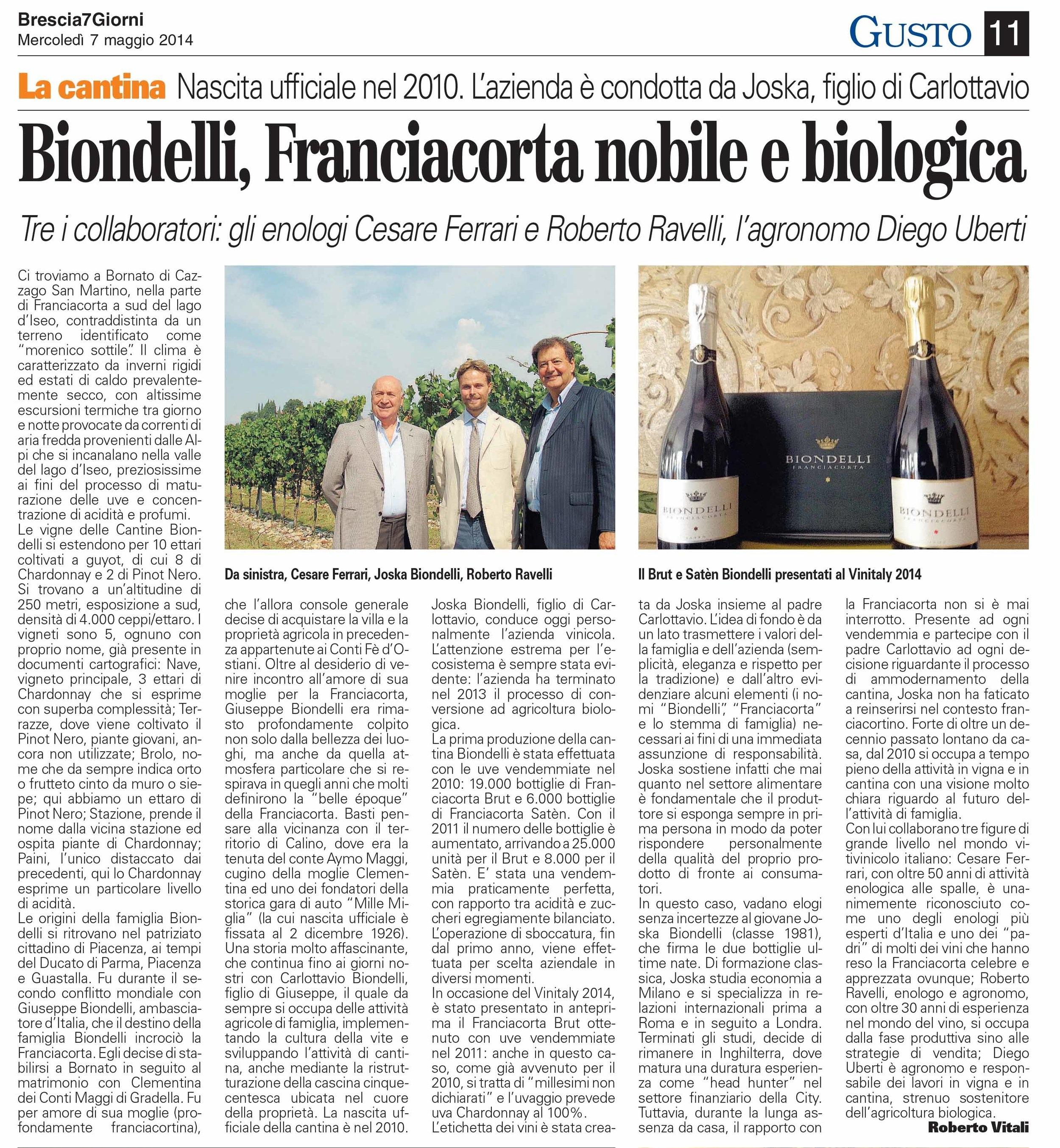 Brescia+7+Giorni+2014.jpg