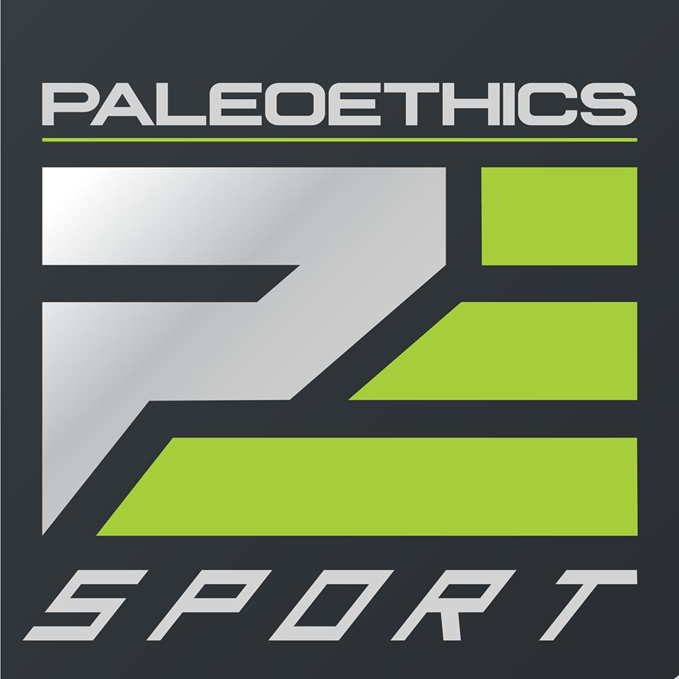 Paleoethics 300x242.png
