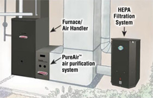 A whole home purification system works your home's HVAC system to purifier the air throughout your entire home.
