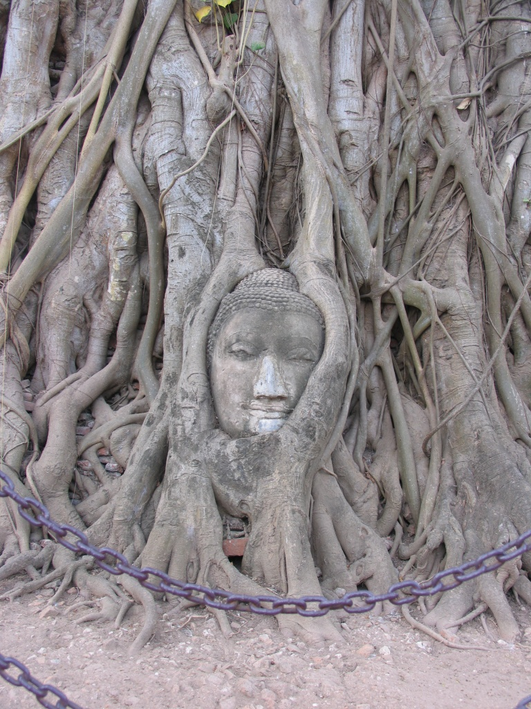 Thailand-08-5-280-1.jpg