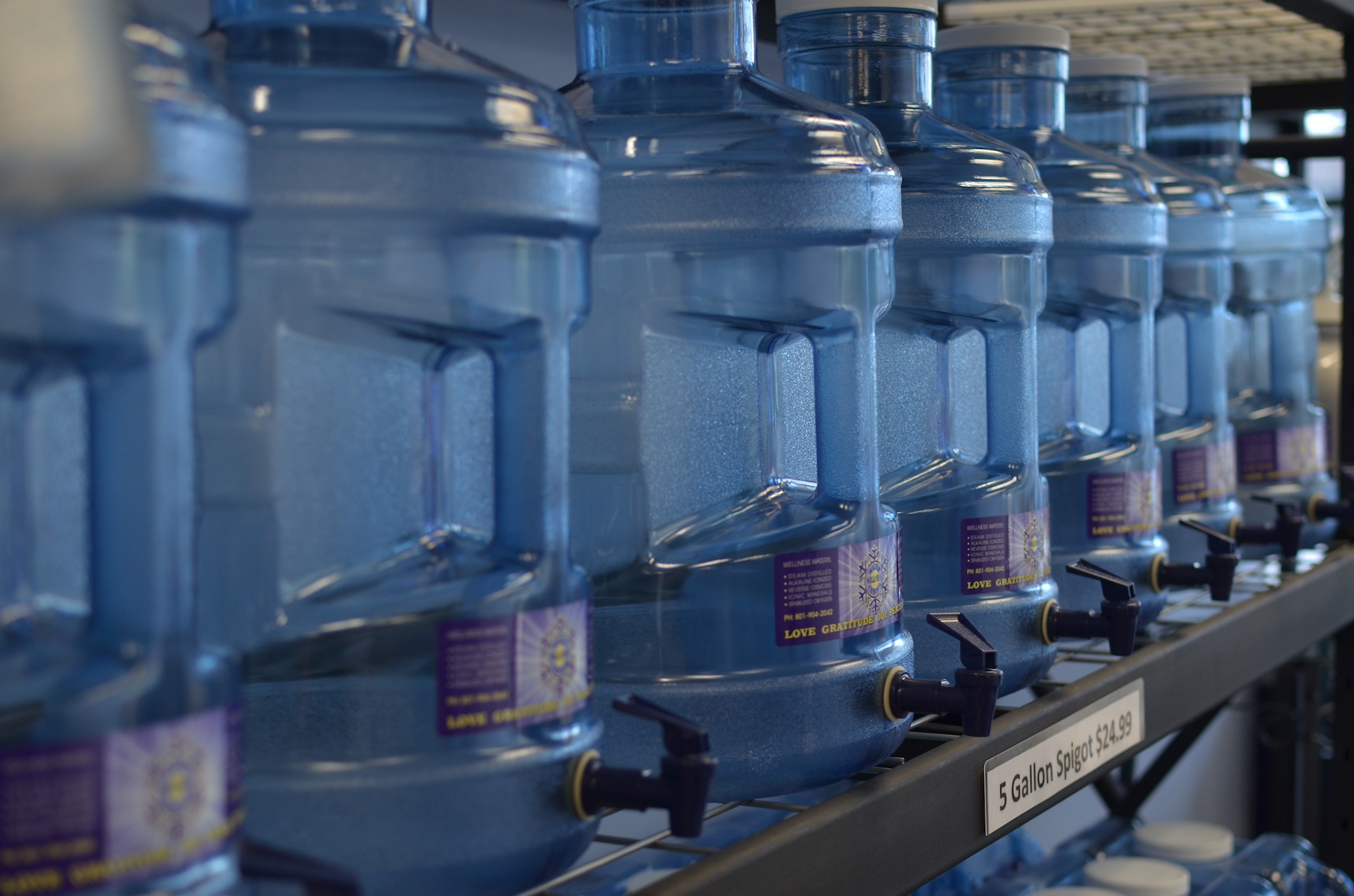 Copy of Water&wellness empty bottles for purchase