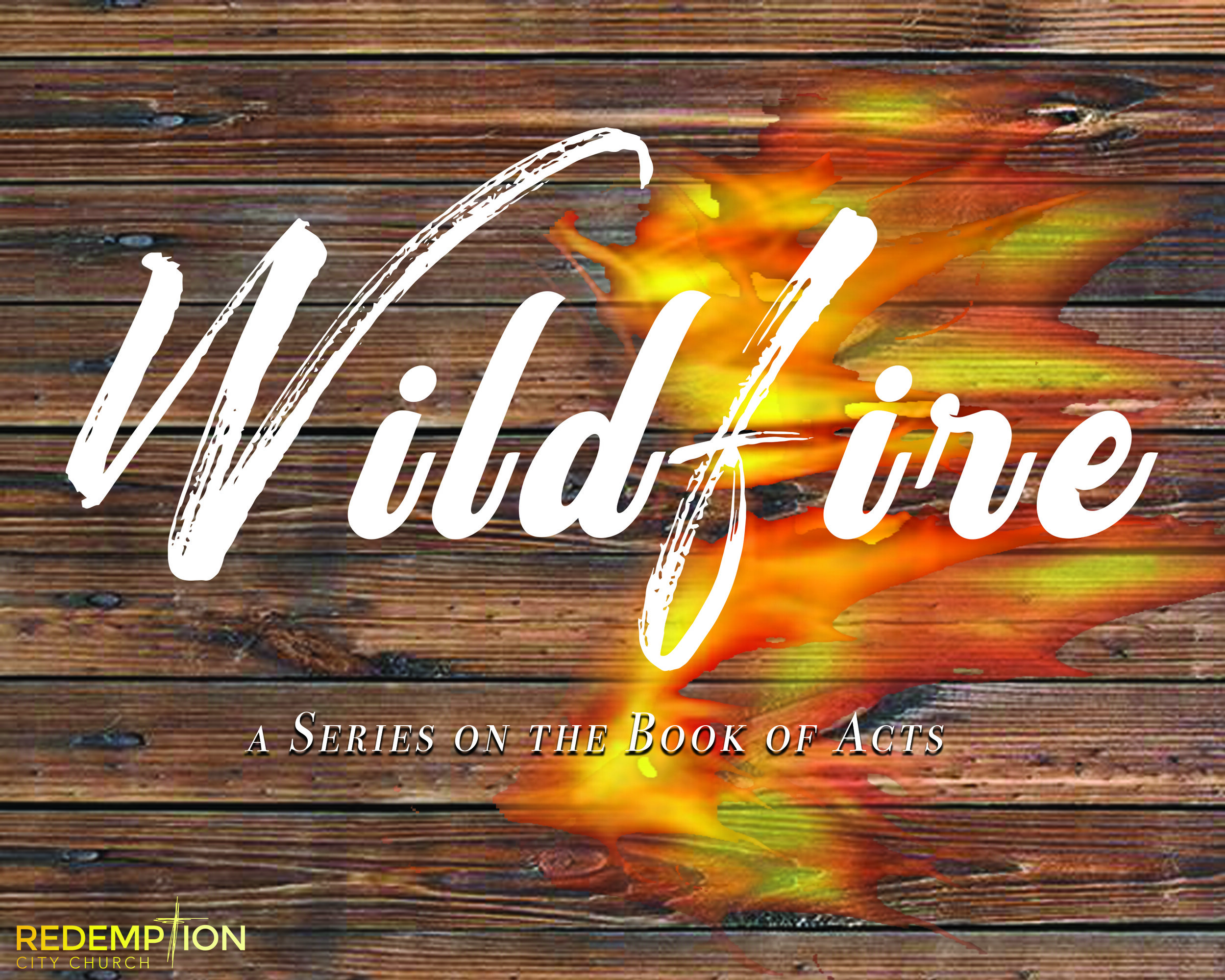 WildFireFINAL.jpg