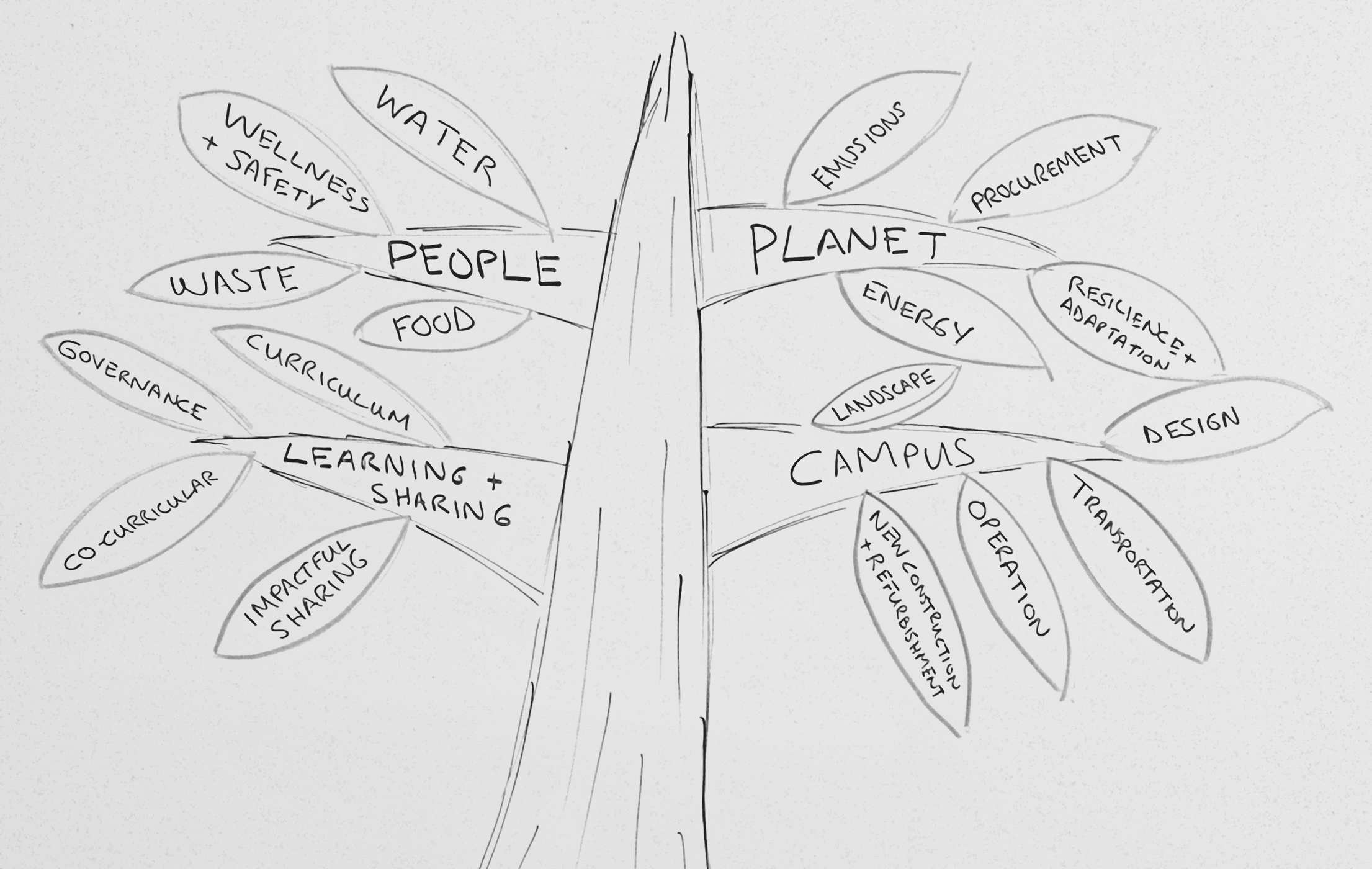 Sustainability Tree.png
