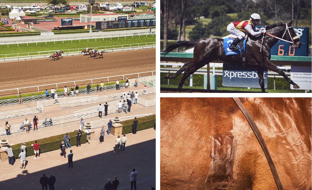 Racing collage.jpg