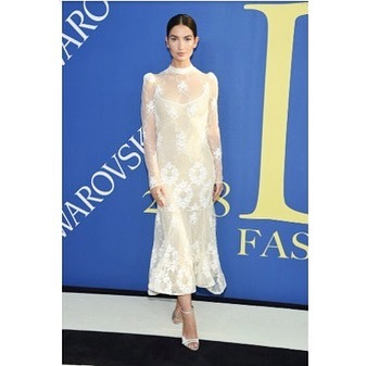 Congrats to all of the winners at the @cfdaawards last night ... And, Nashville's own @lilyaldridge for representin'! #whynfw @cfda @voguemagazine