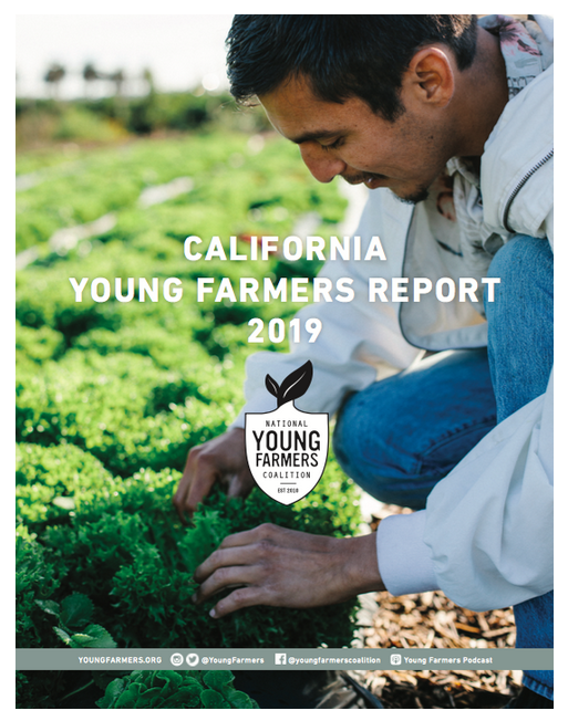 FROM NATIONAL YOUNG FARMERS COALITION'S WEBSITE:   CALIFORNIA FARMERS POWER THE LARGEST AGRICULTURAL ECONOMY IN THE UNITED STATES — an extensive, complex, and diverse industry. The scale of its importance to the nation's food system cannot be overstated: more than a third of the country's vegetables and two-thirds of the country's fruits and nuts are grown in California. This vast production is the harvest of over 70,000 farms worked by farmers and ranchers with varied experiences, each shaped by diverse geographies and backgrounds.  The future of agriculture in California will depend on the next generation of farmers who are already stewarding the state's fields, ranches, and orchards. The 2017 Census of Agriculture found that 27% of current principal operators in the state of California are beginning farmers — farmers with 10 years or less experience managing their current operation. Ensuring these farmers can sustain their livelihoods is critical to the state of California. This is a key moment to understand the needs and challenges facing the next generation of farmers and ranchers who will sustain California agriculture.  This report summarizes those findings to offer a deeper understanding of the top challenges and barriers facing California's young farmers and ranchers, particularly farmers of color. With invaluable input from these farmers, we are drawing a roadmap for legislators, technical service providers, and partner organizations to build a brighter future with farmers in California.  Authors/ Mai Nguyen, Martin Lemos, National Young Farmers Coalition staff   Organization National Young Farmers   Date Published Thursday, Apr 25, 2019