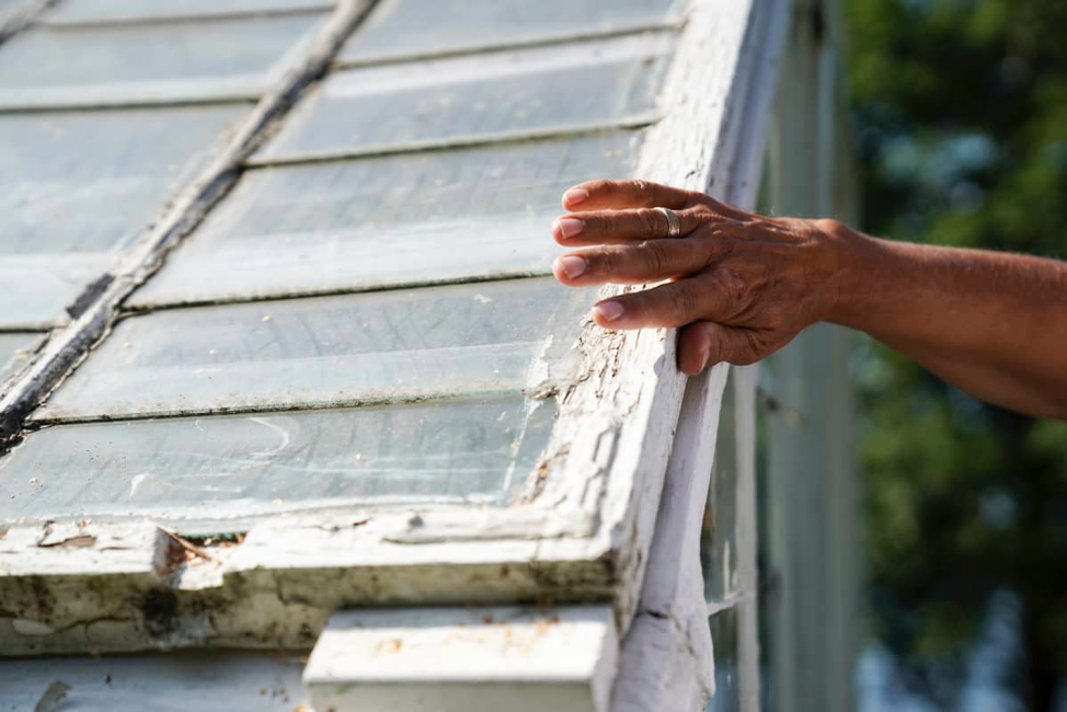The futurist Markku Wilenius strokes the crumbling paint on his 80-year-old greenhouse. Before the winter sets in, the windows will be stored in a shed to shelter them from the weather.