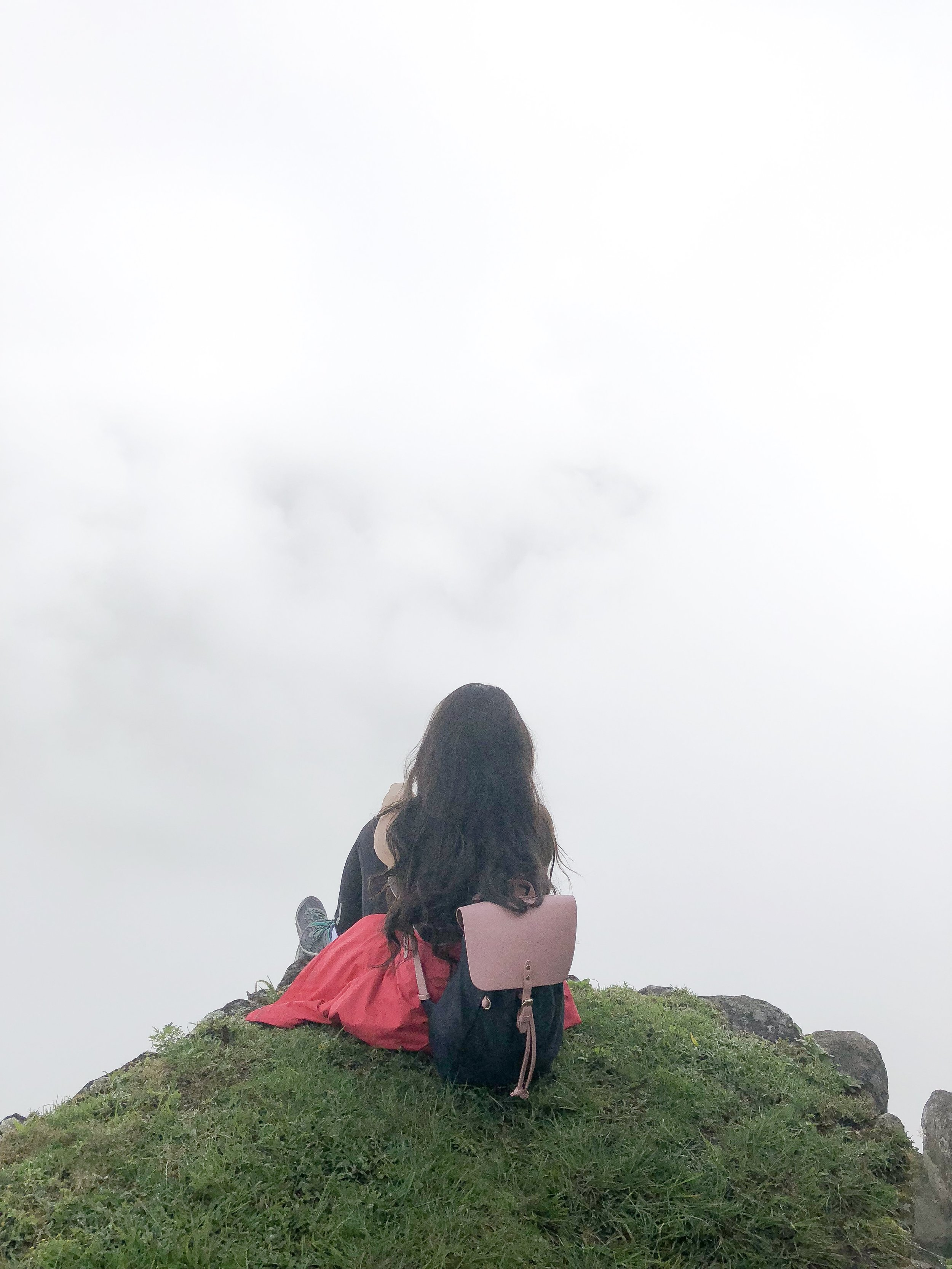 This was around 11 am at the peak of the tallest point in Machu Picchu (Waynapicchu), still super foggy!