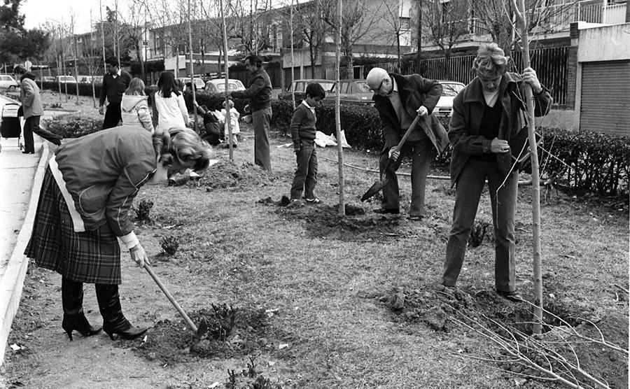 Fiesta del árbol. Ciudad Lineal, 1969.