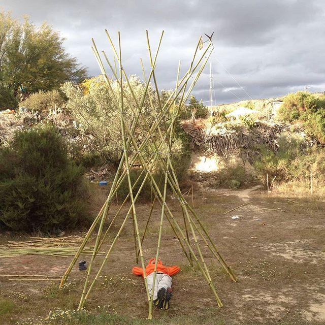 1/4 cane hiperboloid structure for the Water Festival in @sunseed.desert.technology . Wolfgang taking a nap.  #festivaldelagua #rioaguas #endefensadelrioaguas #grasshopper #canestructure #28April #ecoconstruction