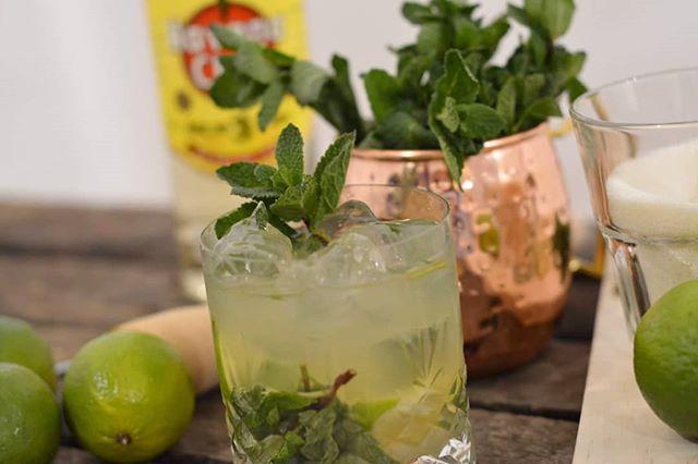 Det er fredag og det er Mojito tid! Lad Monkeybar stå for, at lave lækre cocktails til jeres næste arrangement, så kan I slappe af og nyde at være sammen med jeres gæster 🍸🐒 #mobilbar #monkeybar