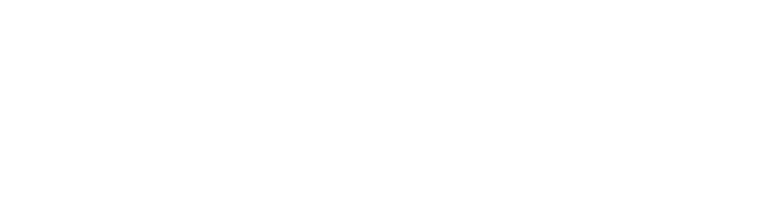 point_of_difference_white no line.png