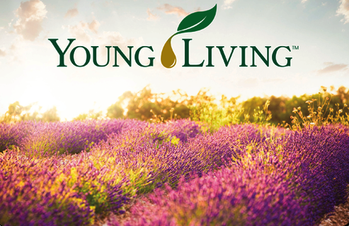 - Young Living was created in 1994 by Gary & Mary Young, when they developed their first organic herb farming and distillation operation. Since then, Young Living has become the world leader in essential oils and wellness solutions. We use these oils in our office due to the pureness of each and every oil. They not only smell wonderful, but help your mind, body & soul feel happy.