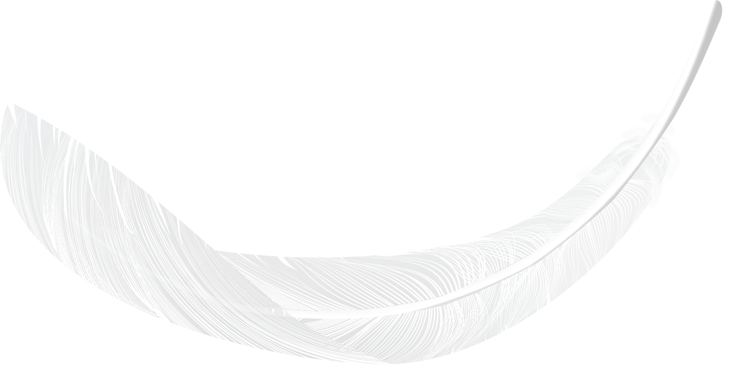 feather1.png