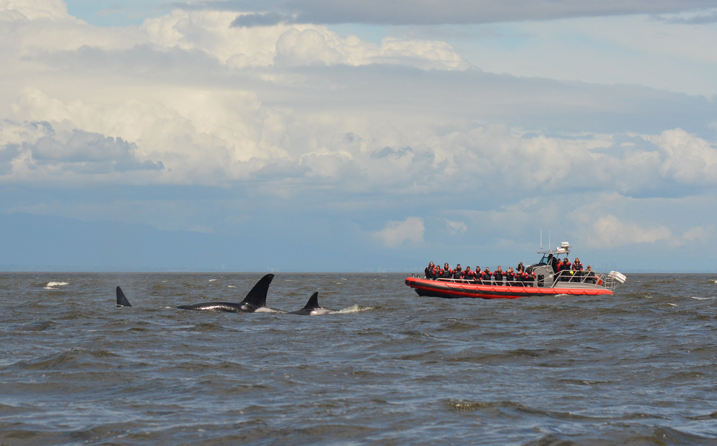 Another vessel full of excited onlookers! Photo by Val Watson