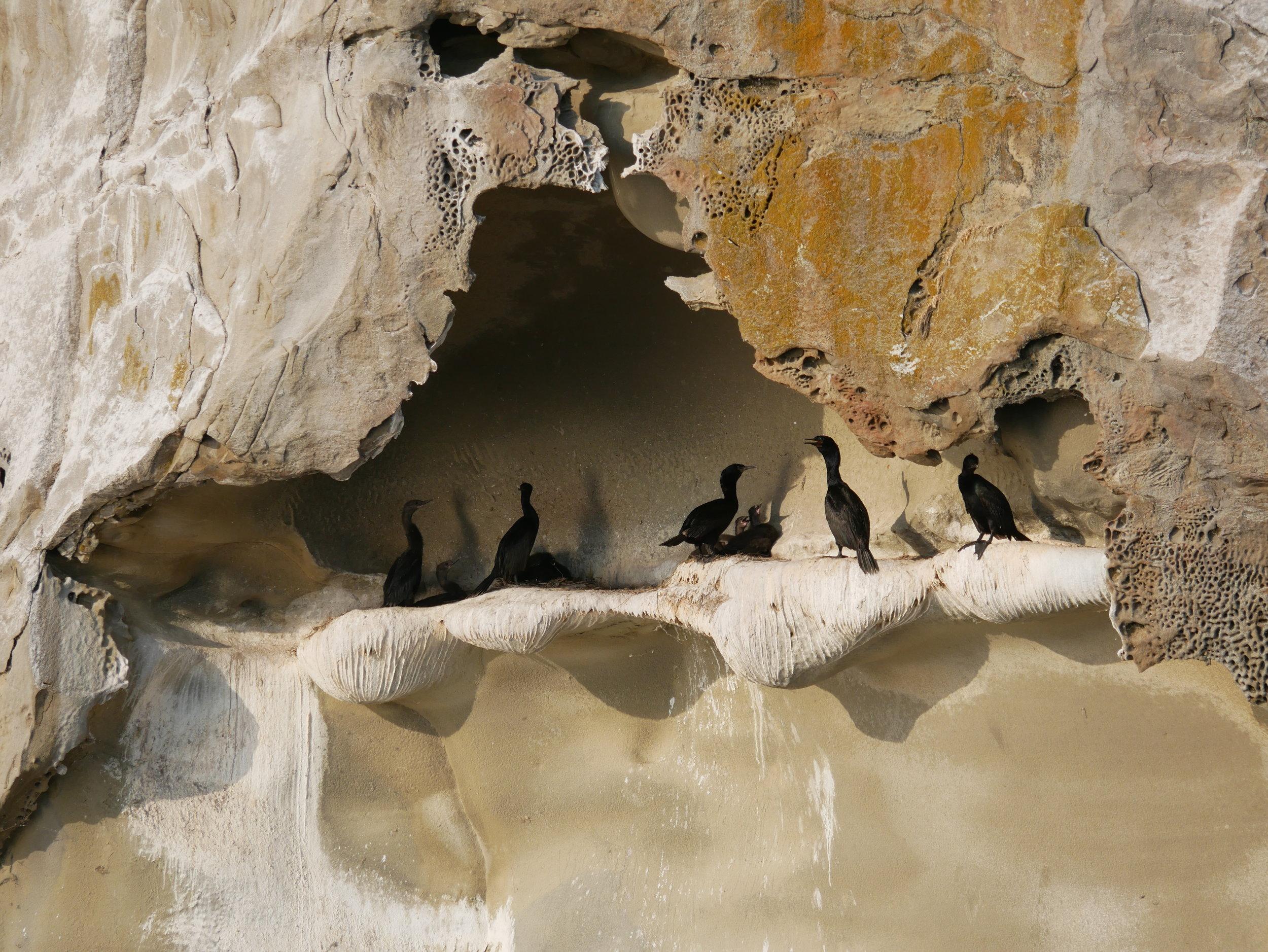 What a beautiful sandstone cave hideout! Photo by Alanna Vivani